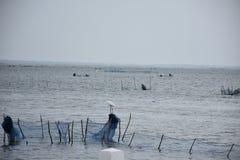 Jaffna Fishering Zdjęcia Royalty Free