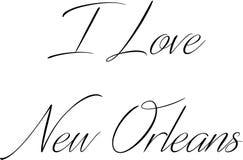 Jag älskar den New Orleans textillustrationen royaltyfri bild