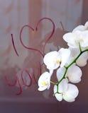 Jag älskar dig Royaltyfria Bilder