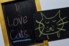 Jag älskar katter på färgrikt handskrivet för uttryck på svart tavla fotografering för bildbyråer