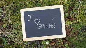 Jag älskar våren Royaltyfri Foto