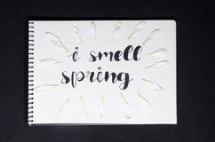 Jag luktar våren arkivbilder