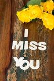 jag missa dig Royaltyfria Bilder