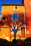 jag shadow treen Royaltyfri Foto