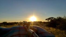 Jaga med hagelgeväret på solnedgången arkivfoto