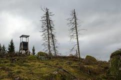 Jagdturm auf einem Waldhügel Stockbilder
