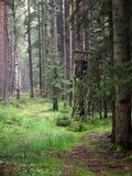 Jagdturm im Wald Lizenzfreie Stockfotografie