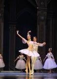 Jagen des Traum-D Ballett-Nussknackers Lizenzfreie Stockfotografie