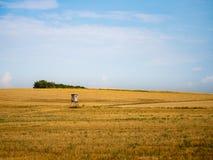 Jagers` s toppositie in een openfield van warm, gouden gras royalty-vrije stock fotografie