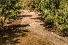 Jagersrivier, Hogere Jager, NSW, Australië stock foto