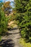 Jagersrivier, Hogere Jager, NSW, Australië stock fotografie