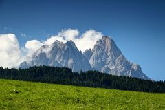 Jagged Dolomiti Sesto peaks tower over forest and sunny meadow. Crags of jagged Sexten Dolomites peaks tower above pine forest and grassy meadow in summer Royalty Free Stock Images