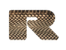 Jagged edge text letter made of natural snake skin texture. Stock Photography