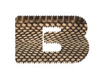 Jagged edge text letter made of natural snake skin texture. Royalty Free Stock Photos