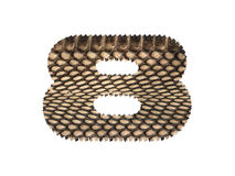 Jagged edge text number made of natural snake skin texture. Stock Photos