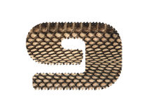 Jagged edge text number made of natural snake skin texture. Royalty Free Stock Images