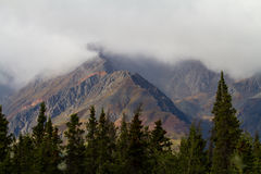 Jagged Mountain Range. A rugged mountain range covered in low lying cloud with green pine trees in the foreground Royalty Free Stock Photography