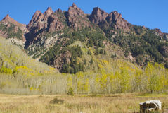 Jagged Peaks in Fall. Jagged red peaks framed by golden fall aspen and a beautiful dark blue sky Royalty Free Stock Image