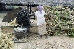 Jaggery-cana-de-açúcar e suco da extração Imagem de Stock