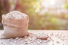 Jaglany ryż lub jagła groszkujemy w małym worku na drewnianym stole Zdjęcie Royalty Free