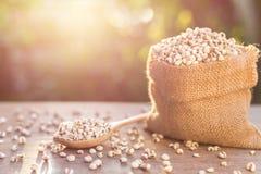 Jaglany ryż lub jagła groszkujemy w małym worku na drewnianym stole Zdjęcia Stock