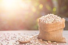 Jaglany ryż lub jagła groszkujemy w małym worku na drewnianym stole Obraz Stock
