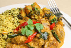 Jagnięcy Korma Curry'ego Posiłek Zdjęcia Royalty Free