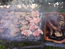 Jagnięcych kotlecików i wieprzowiny mięsa BBQ Zdjęcia Royalty Free