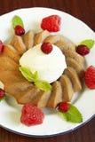 jagod czekoladowy kremowego deseru lód obrazy stock