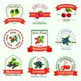 Jagod wektorowe ikony dla jagodowych produkt etykietek Fotografia Stock