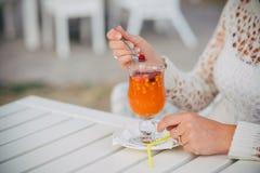 Jagoda od owocowej herbaty Obraz Stock