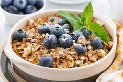 Jagoda rozdrobni z oatmeal, zbliżenie Zdjęcie Stock