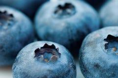 jagodowe obraz stock