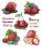 jagodowe ilustracje ustawiają Zdjęcia Stock
