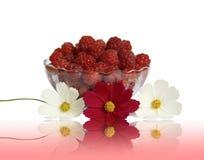 Jagodowe malinki w szklanej wazie na stole Obraz Stock