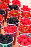 jagodowe owoc Obrazy Royalty Free