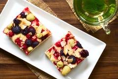 Jagodowej owoc tort Zdjęcie Stock