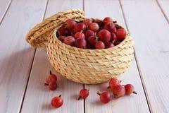 jagodowy agrest w małym koszu Obrazy Stock