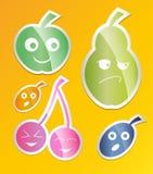 Jagodowy ikona set Etykietki z jagodami jabłko, bonkreta, śliwka, morela, czereśniowy mieszkanie styl wektor Fotografia Royalty Free