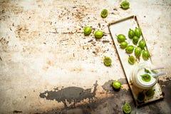 Jagodowy smoothie robić od zielonych agrestów Fotografia Stock