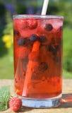 jagodowy sok Obraz Royalty Free