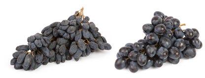 jagodowy winogrono Zdjęcia Stock