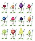 jagody łyżka ilustracji