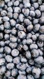 jagody blueberri naturalny obrazy stock