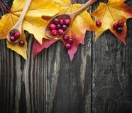 Jagody cranberries i drewniana łyżka na liściu klonowym Obrazy Royalty Free