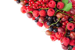jagody dojrzały świeży Obraz Stock