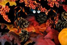 jagody Halloween opuszczać pająka cudacki Obraz Stock