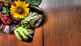 Jagody i kwiat uprawa Fotografia Stock