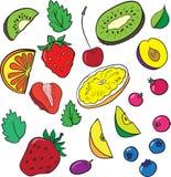 Jagody i plasterki owoc ilustracji