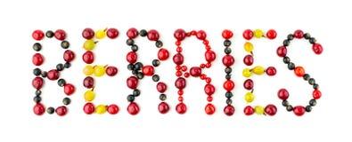 jagody Kolorowa asortowana mieszanka wiśnia, czarny rodzynek, czerwony rodzynek, agrest Obrazy Stock